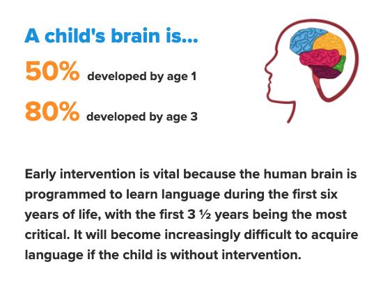 Child's Brain Info Box